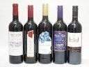 セレクション 赤ワイン 5本セット( スペインワイン 1本 フランスワイン 1本 イタリアワイン 1本 チリワイン 2本) 計750ml×5本