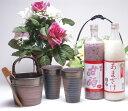 贈り物 日本製萬古焼き 豪華酒器セットZ3陶芸作家 安藤嘉規作(アルコール0%本格甘酒(あまざけ)900ml×2本)セット