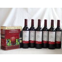 ショッピングセット ワインセット チリ産大容量赤ワイン飲み比べセット(サンタ・レジーナ カベルネ・ソーヴィニヨン 赤ワイン フルボディ3000ml
