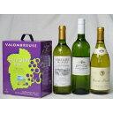 ワインセットフランス産大容量白ワイン飲み比べセット(ジャンジャンソーヴィニヨン・ブランフランス白ワイン辛口3000m