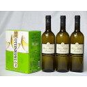 イタリア産大容量白ワイン飲み比べセット(カヴィロ タヴェルネッロビアンコロッソ イタリア 白ワインやや辛口3000ml