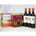 ワインセットチリ産大容量赤ワイン飲み比べセット(VIAJERO(ヴィアヘロ)赤ワイン3000ml サンタ・レジーナカベルネ