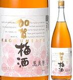 2005年8月日本経済新聞NIKKEIプラス1にて堂々1位。14度 加賀梅酒 1800ml瓶 萬歳楽蔵元製造の梅酒 小堀酒造店 石川県 NIKKEIプラス1にて1位 化粧箱なし