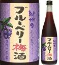 たっぷり梅と完熟ブルーベリーの甘酸っぱい梅酒。12度 ブルーベリー梅酒 720ml瓶 中野BC 和歌山県  業務用・季節限定商品 化粧箱なし