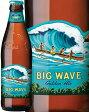 コナビール ビッグウェーブ ゴールデンエール 355ml ハワイ(アメリカ)