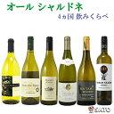 ショッピングフランス オール シャルドネ 4ヵ国 飲み比べ 白ワイン 6本セット【通常便 送料無料】【B6-005】