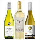 【エノテカ厳選】シャルドネ飲み比べ3本セット [ 白ワイン 辛口 ニュージーランド他 750mlx3本 ] 北海道、沖縄は追加送料かかります。