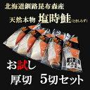 北海道釧路産 塩トキシラズ鮭(お試し5切)...