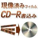 CD-R�����݁i�����σt�C�������f�W�^�����j1�{������190�~�i�ō���205�~�j�y�l�K�E�|�W�E�����z