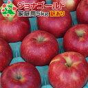 【予約受付】 【訳あり】 りんご ジョナゴールド 家庭用キズあり 青森県産 5kg 送料込