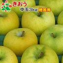 【予約受付】 りんご きおう 特選 中玉 青森県産 ギフト 贈答用 3kg 送料別 まとめ買い