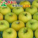 【予約受付】 りんご きおう 特選 中玉 青森県産 ギフト 贈答用 5kg 送料別 まとめ買い