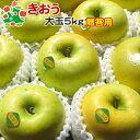 【予約受付】 りんご きおう 特選 大玉 青森県産 ギフト 贈答用 5kg 送料別 まとめ買い