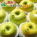 【予約受付】 りんご きおう 特選 大玉 青森県産 ギフト 贈答用 10kg 送料別 まとめ買い