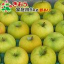 【予約受付】 【訳あり】 りんご きおう 家庭用キズあり 青森県産 5kg 送料別 まとめ買い