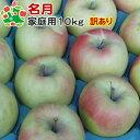 【予約受付★11月上旬お届け予定】 りんご 訳あり 青森 名月 家庭用 キズあり 10kg