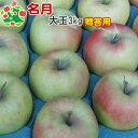 【予約受付★11月上旬お届け予定】 りんご 贈答用 青森 名月 特選 大玉 ギフト 3kg
