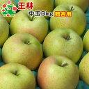 りんご 贈答用 青森 りんご リンゴ 林檎 青森 【11月上旬収穫】王林特選中玉3kg