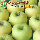 【15時までのご注文で最短翌日出荷】 りんご シナノゴールド 贈答用 小玉 特選 青森県産 10kg (CA貯蔵)