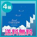 【送料無料】2ウィークキャンビュー4箱/2週間使い捨てコンタクトレンズ/シンシア