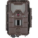 【国内未発売】Bushnell TROPHY CAM HD Aggressor No-Glow 11
