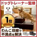 【ドッグトレーナー監修】不満点をわんこ目線で解決 ドッグステップ 犬 ペット ステッ