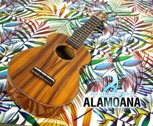 �������AlaMoanaUK-2800G����������祻�å���ŵ�������DVD�դ��ڥ���⥢�ʽ��UK2800G�����ڥ��������