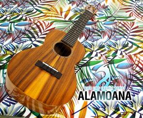 コンサートタイプウクレレAlaMoanaUKC-3800Gウクレレ入門セット