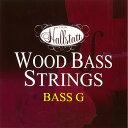 ウッドベース弦 Hallstat HWB-I [1弦(G)]【ハルシュタット コントラバス】【ゆうパケット対応】