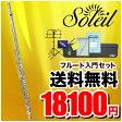 Soleil フルート 初心者 入門セット SFL-3/リングキイ(オープンホール)【ソレイユ SFL3 フレンチモデル 管楽器】