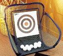 DAIYA(ダイヤゴルフ) アプローチ練習器 ベタピンアプローチ TR-407