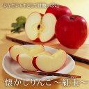 懐かし りんご 紅玉 10〜12玉 【山形県産地直送 東根産の昔ながらの甘酸っぱいリン