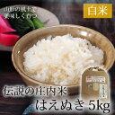 伝説の庄内米 はえぬき 5kg 【山形県産 特別栽培米 令和元年度産】