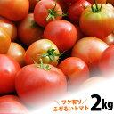 【送料無料】 土佐の高知のトマト 新鮮不ぞろいトマト君たっぷり約2kg! とまと
