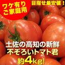 【送料無料】ワケ有り 土佐の高知の 新鮮不ぞろいトマト君たっぷり約4kg【売れてます】 とまと 沖縄県と北海道と離島は、別途1000円配送料がかかります。売れ筋