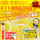 小夏:約2.5kg♪ ギフト用秀品日向夏・ニューサマーオレンジ!高知産沖縄県と離島は配