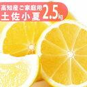 美味しい小夏!【送料無料】ご家庭用♪初夏の香り!高知産:土佐小夏:約2.5kg♪日向夏
