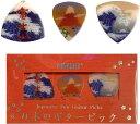 PICKBOY PB100/MTF 日本のギター ピック/富士山三景 お土産にも最適【メール便発送・
