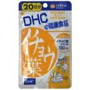 【DHC】 イチョウ葉 20日分 60粒お取り寄せのため、入荷に10日ほどかかる場合があります。【HLS_DU】【05P08Feb15】