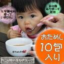 ちこり村国産たまねぎスープ 10包 【送料無料】化学調味料不使用!