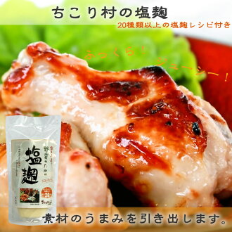 He is alive! Raw salt malt Sachiko baby-sitter Brewers hand making salt yeast 180 g x 1 book-painting to vegetables, meat and fish marinated and grilled spiced! all-purpose seasoning-free sales