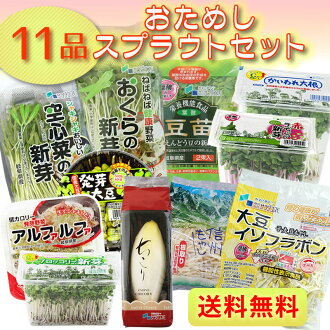 Many times you can order-fresh sprout vegetables 11 product sets