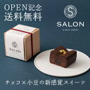 【OPEN記念・送料無料】SALON GINZA SABOU しょこらずき(小)【上質プチギフト】