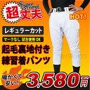 【ポイント3倍】【あす楽対応】【特別価格3580円】LUO-7385WP 野球 冬用裏起毛パンツ 試