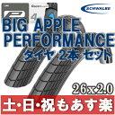 【返品保証】 SCHWALBE シュワルベ BIG APPLE ビッグアップル マウンテンバイク クロスバイク MTB タイヤ 2本セット 26x2.0 【あす楽】