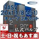 SCHWALBE シュワルベ ミニベロ チューブ 20×11/8(451)用チューブ 仏式バルブ 7ASV 2本セット