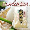 【30年産 コシヒカリ 魚沼産 送料無料】新潟県 南魚沼 J...