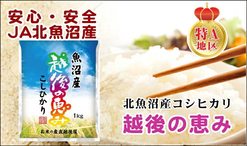 【29年 コシヒカリ 魚沼産 送料無料】新潟県...の紹介画像2