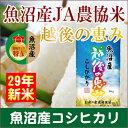 【29年産 コシヒカリ 魚沼産 JA農協米】新潟県 魚沼産 ...