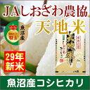 【29年産 コシヒカリ こしひかり 魚沼産】新潟県 南魚沼 ...